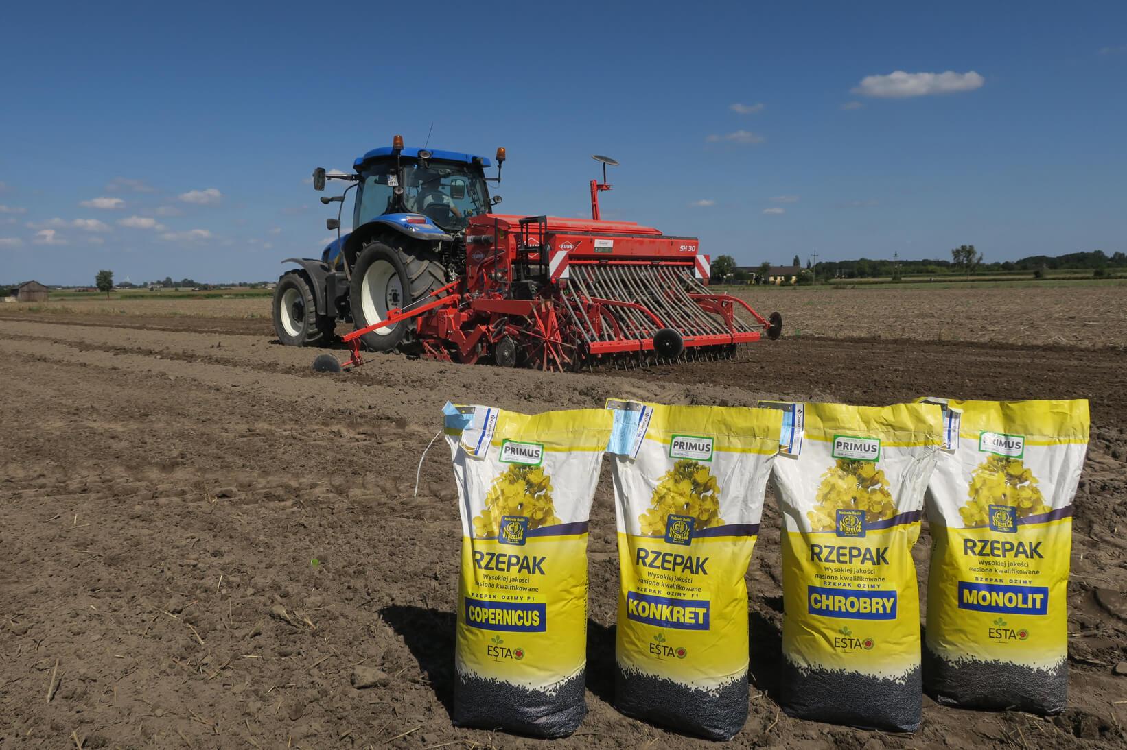 materiał siewny rzepaku Godziński Rolnictwo, nasiona rzepaku, rzepak ozimy nasiona
